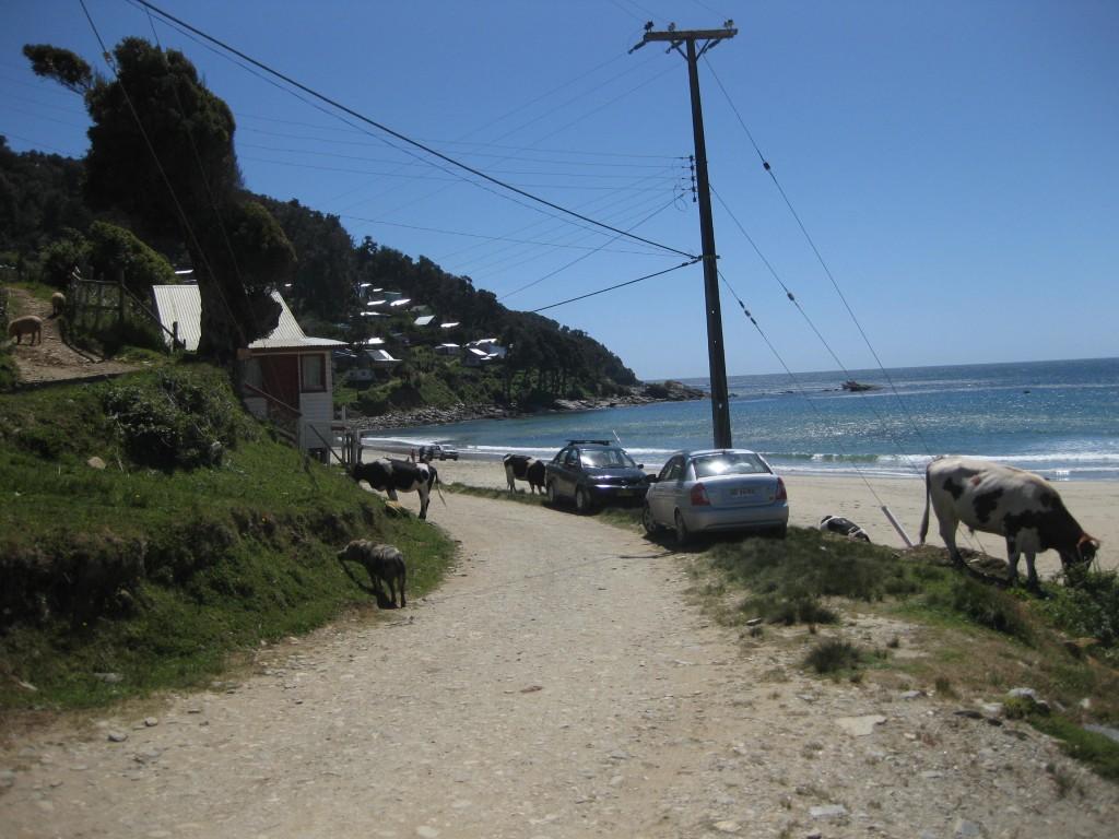 "Die Strand-""Promenade"" in Maicolpué"